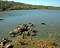 Karstified aragonitic limestone (Pain Pond, San Salvador Island, Bahamas) 7 (15940817314).jpg