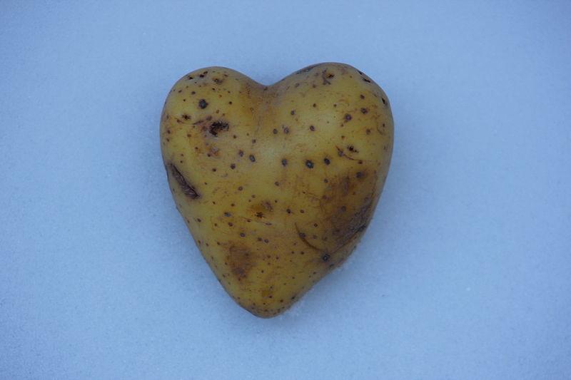 Kartoffelherz Potatoheart.jpg