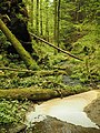 Kavinský potok (18).jpg