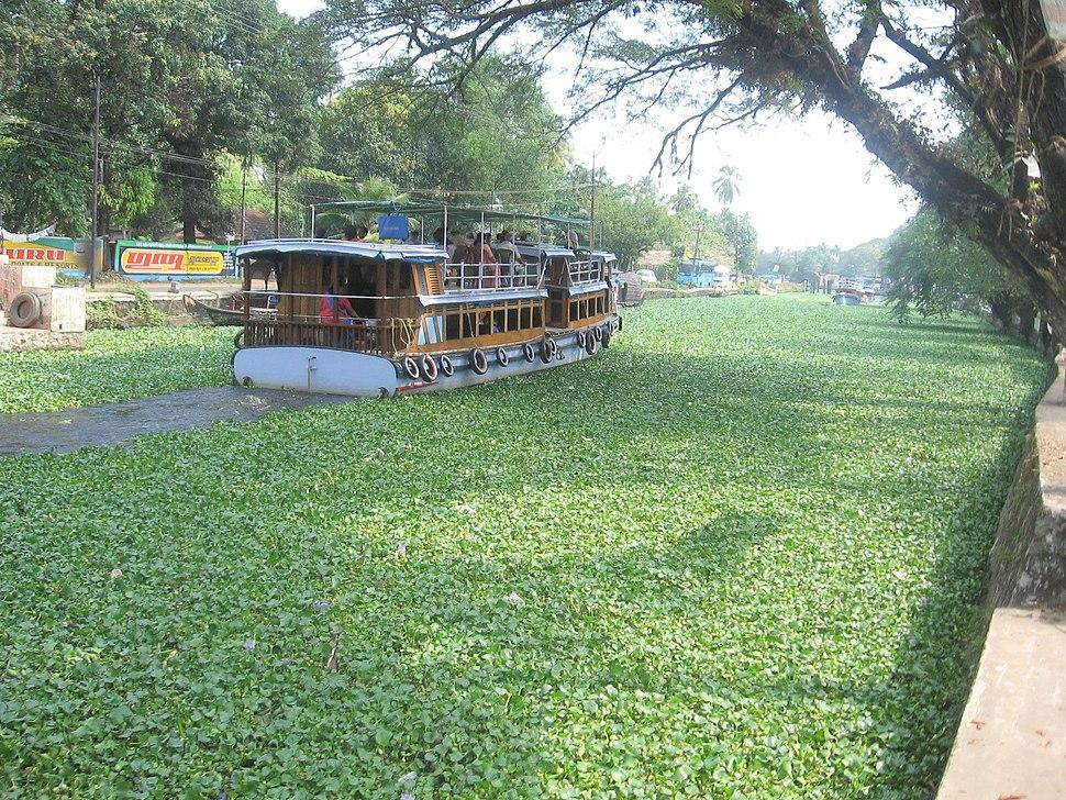 Kerala-Backwaters Alppuzha