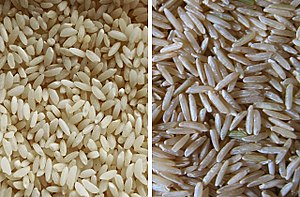 Basmati - Brown regular rice (left) compared to brown basmati rice