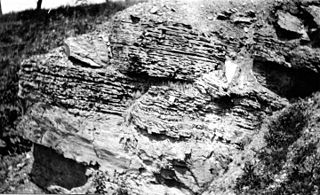 Kinzers Formation