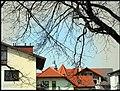 Kościuszki, Mielec, Poland - panoramio (61).jpg