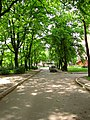 Kokles iela - panoramio (6).jpg