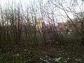 Kuibyshivs'kyi district, Donetsk, Donetsk Oblast, Ukraine - panoramio (1).jpg