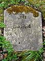 LIlle Henning (Thorshavn Kirkegård).JPG