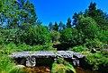 La Dadalouze au Pont Beau.jpg