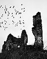 La Ruine - Bociulesti - Vedere laterala.jpg