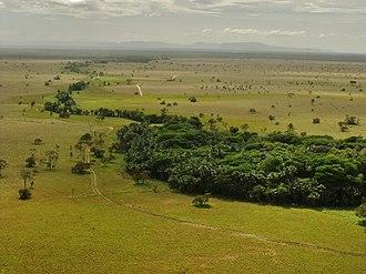 Santos Luzardo National Park - Image: La vegetación más abundante señala el canal de los ríos