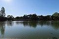 Lac supérieur du bois de Boulogne 17.jpg