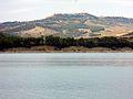 Lago di San Giuliano, uccelli.jpg