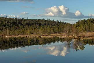 Lake Iso-Tiilijarvi in Hollola.JPG