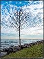 Lake Ontario Shoreline (8181006541).jpg
