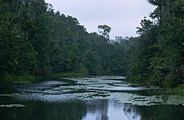 Lake in the Forest (9654486219).jpg