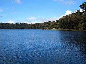 Lake Barrine - taken from the lake's cruise
