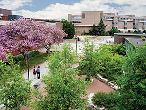 Lakehead Univerity campus in the Summer