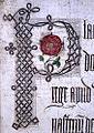Lancastrian Rose.jpg