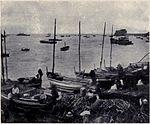 Landing Firewood, MON 1909.jpg