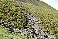 Landslide Scar - geograph.org.uk - 1329521.jpg
