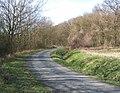 Lane approaching Langley Wood - geograph.org.uk - 724743.jpg
