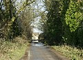Lane to Hall Farm, near Thickwood - geograph.org.uk - 1125904.jpg