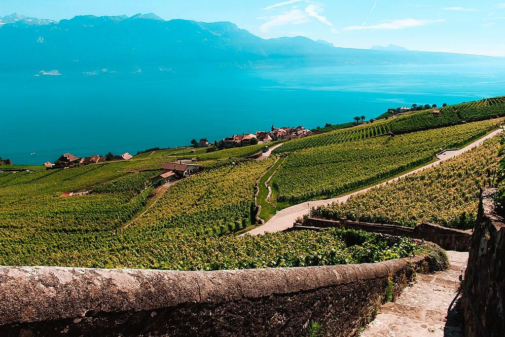 Weinbergterrassen von Lavaux (UNESCO-Welterbe in der Schweiz). Lavaux - Chexbres