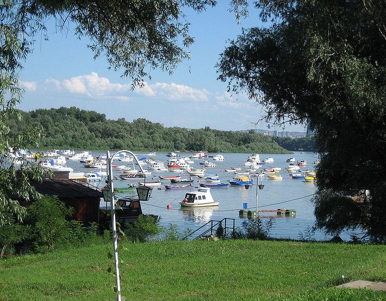 Fichier:Le Danube entre Novi Beograd et Zemun.jpg