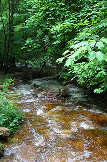 Lead Run tributary of East Branch Fishing Creek in Sullivan County, Pennsylvania