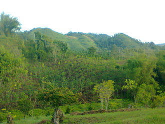 Lebak, Sultan Kudarat - Slope aspect and elevation