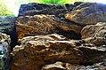 Ledges at Cuyahoga Valley National Park (10544330845).jpg