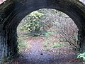 Leigh Woods under the railway - Nov 2013 - panoramio.jpg