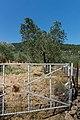 Lesbos - panoramio (1).jpg