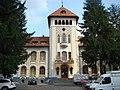 LiceulForestierCurteaDeArges (2).JPG