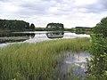 Lindean Reservoir - geograph.org.uk - 214004.jpg