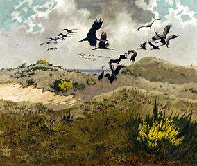 Cranes in dunes.