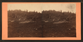 Little Round Top. Swamp and breastworks in foreground, from Robert N. Dennis collection of stereoscopic views.png