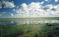 Llanos3.jpg