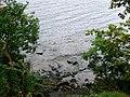Loch Ness shoreline. - geograph.org.uk - 253844.jpg