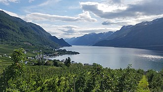 Hardanger is one of Norway's most important sources of fruit, providing approximately 40% of the country's fruit production, including apples, plums, pears, cherries, and redcurrants. Lofthus1.jpg