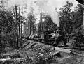 Log train 01.jpg