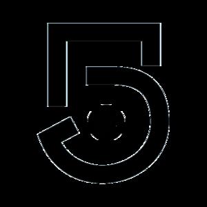 Canal 5 (Mexico) - Image: Logotipo Canal 5 México