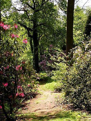 Lydney Park - Lydney Park Gardens
