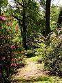 Lydney Park Gardens - geograph.org.uk - 154426.jpg