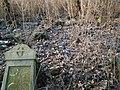 MOs810 WG 2017 2 (Notec Polder) (Gorecko, old evang. cemetery) (7).jpg