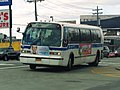 MTA Flatbush South 42.jpg