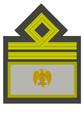 MVSN-Luogotenente generale.png