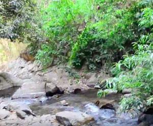 Mae Koeng Waterfalls - Image: Mae Koeng Waterfallss