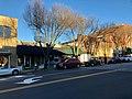 Main Street, Brevard, NC (32794814548).jpg