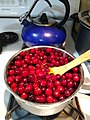 Making cranberry sauce - stovetop.jpg