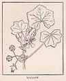 Mallow page 1756.jpg